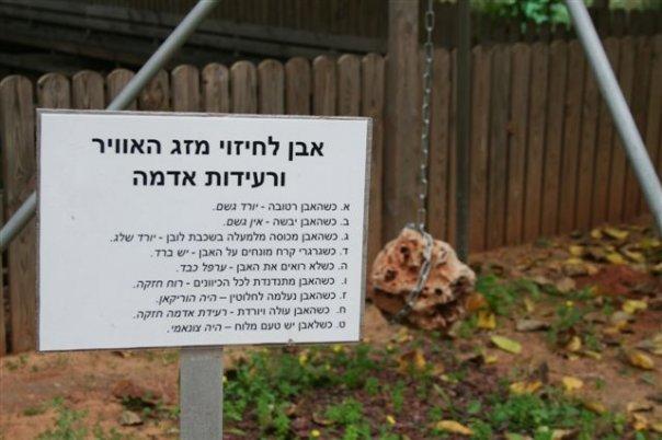 רק בישראל 1